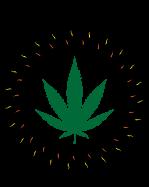 Ambrosia Cannabis.ca